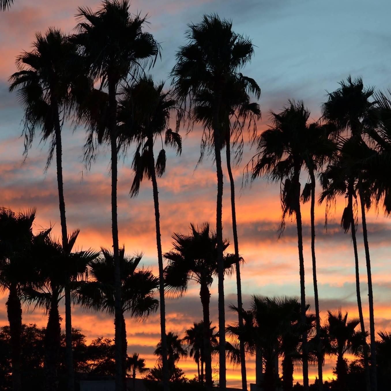 Sarasota Real Estate Investors Association