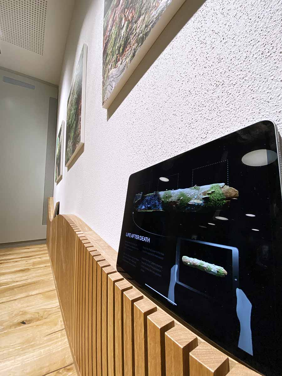 An iPad leaning on a wall next to an augmented reality intallation