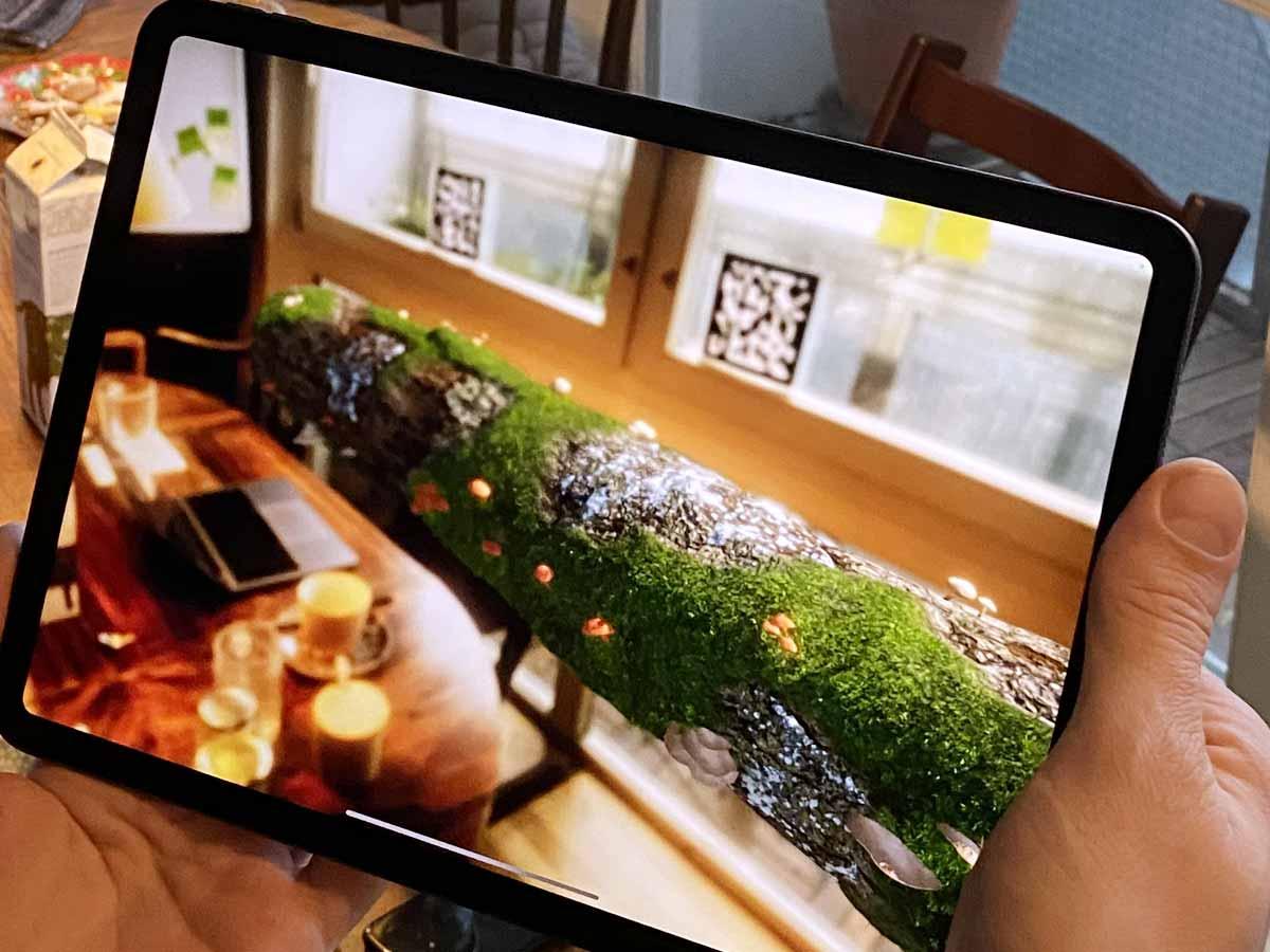 Augmented Reality Erlebnis auf einem iPad