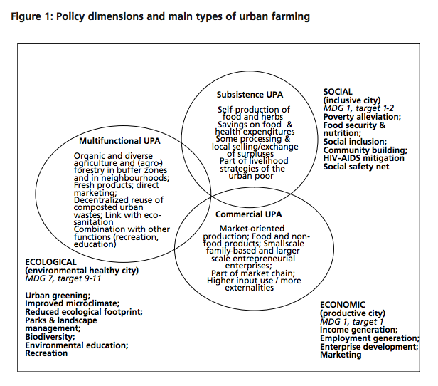 Policy dimensions and types of urban farming