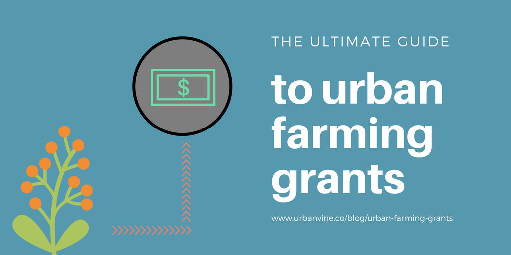 The Ultimate Guide To Urban Farming Grants