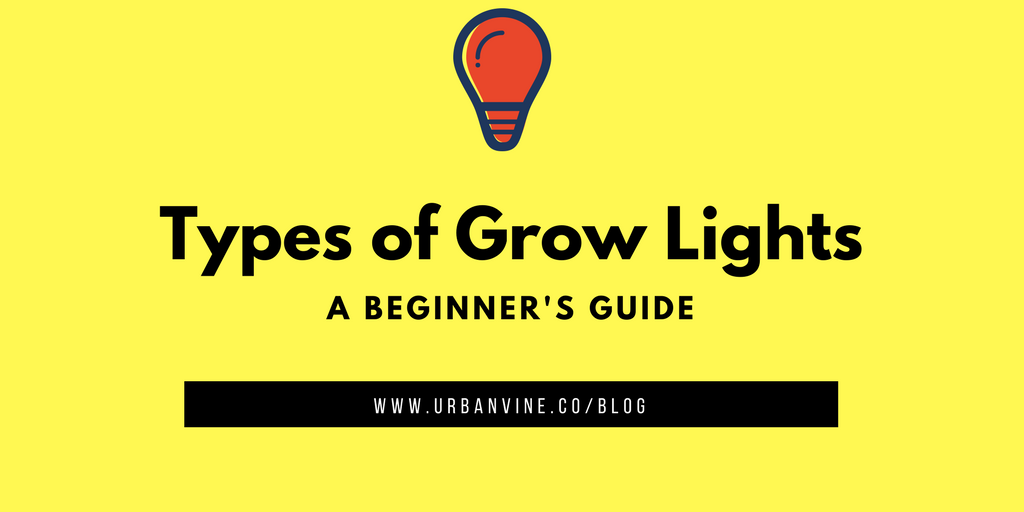 3 Fundamental  types of grow lights for indoor urban farming you should know about