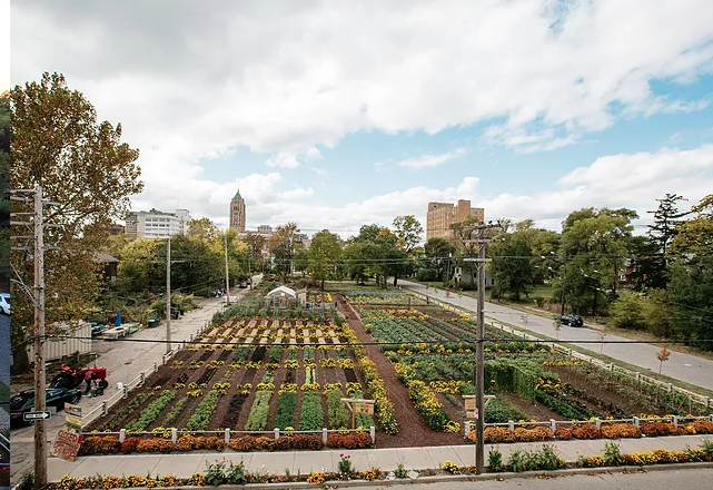 Michigan Urban Farming Initiative