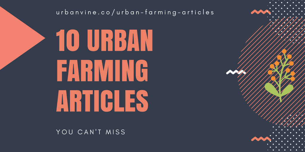 10 Urban Farming Articles You Can't Miss