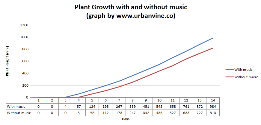 plant growth with and without music: benefits of urban noise for urban rooftop farming