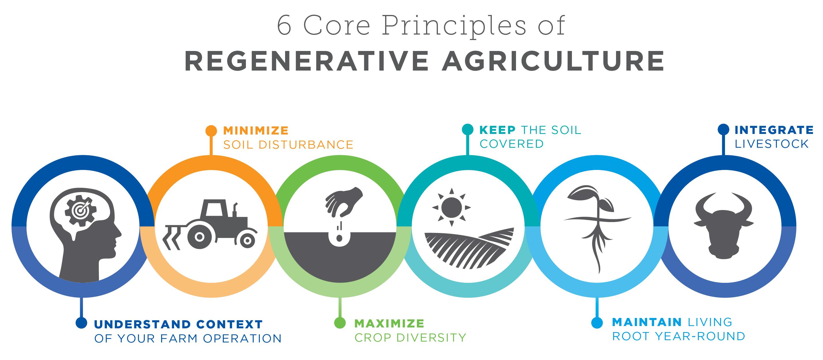 Regenerative Agriculture 2020