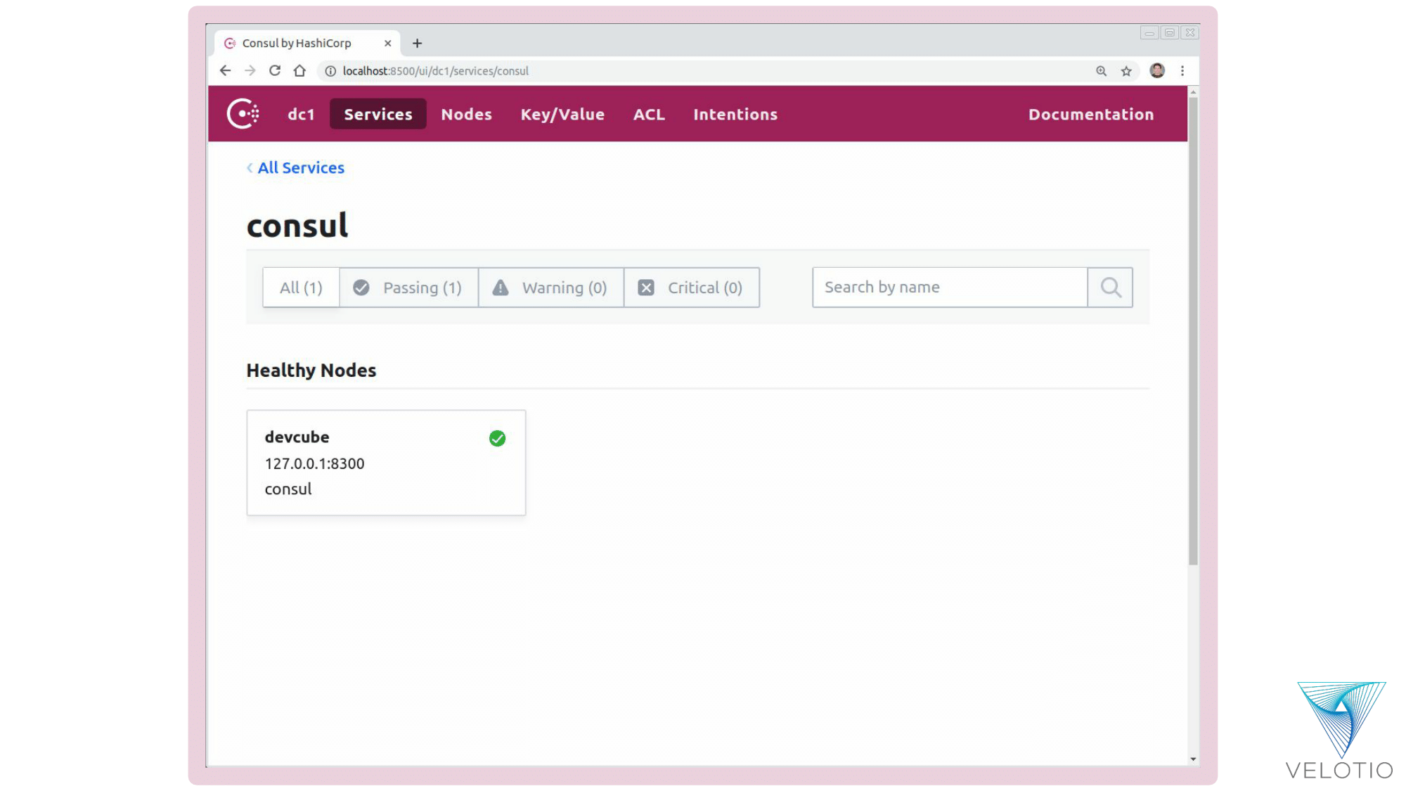 Exploring node-level information for each service on Consul Web UI