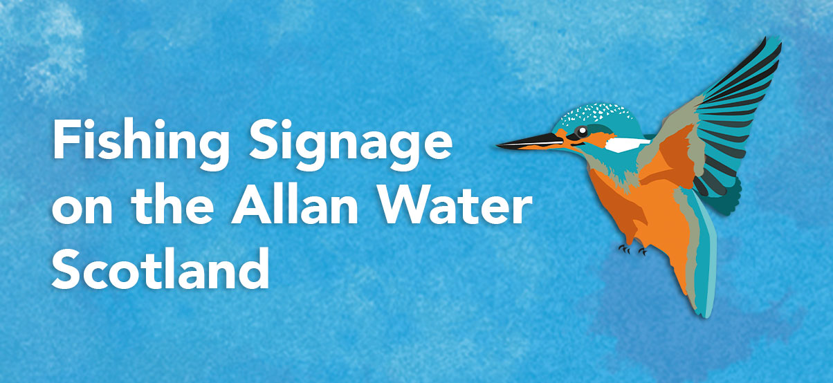 Fishing Signage on the Allan Water, Scotland. Illustration of a kingfisher bird.