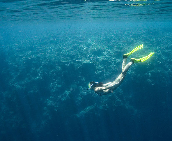 blue water diving snorkelling