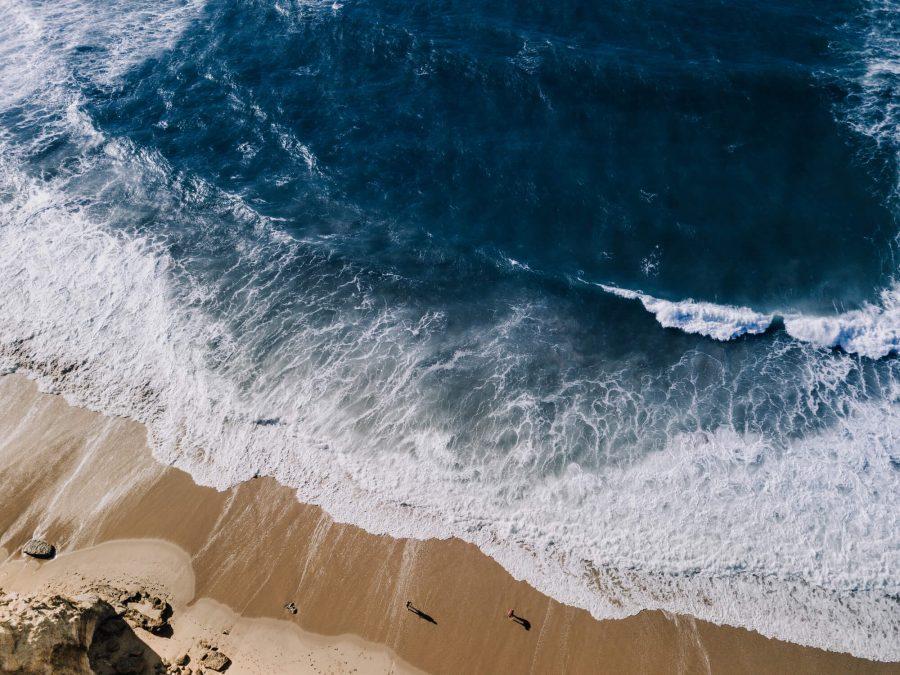 Estratégia do oceano azul: afinal, o que é? Pontomais 2019