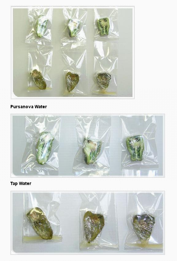 Wonders With Pursanova Water