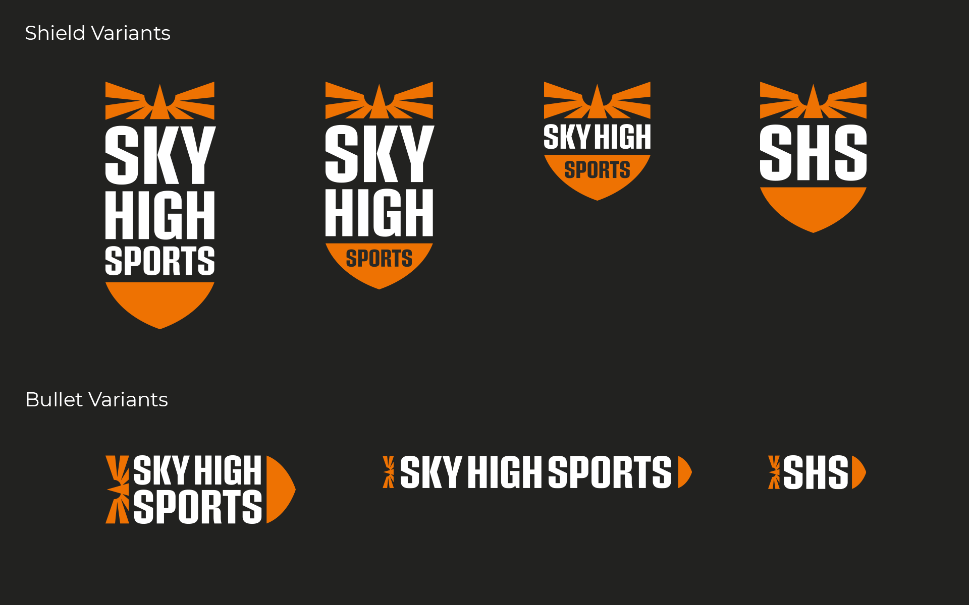 Sky High Sports Logo Design Variants