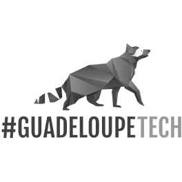 Logo de l'association #GuadeloupeTech