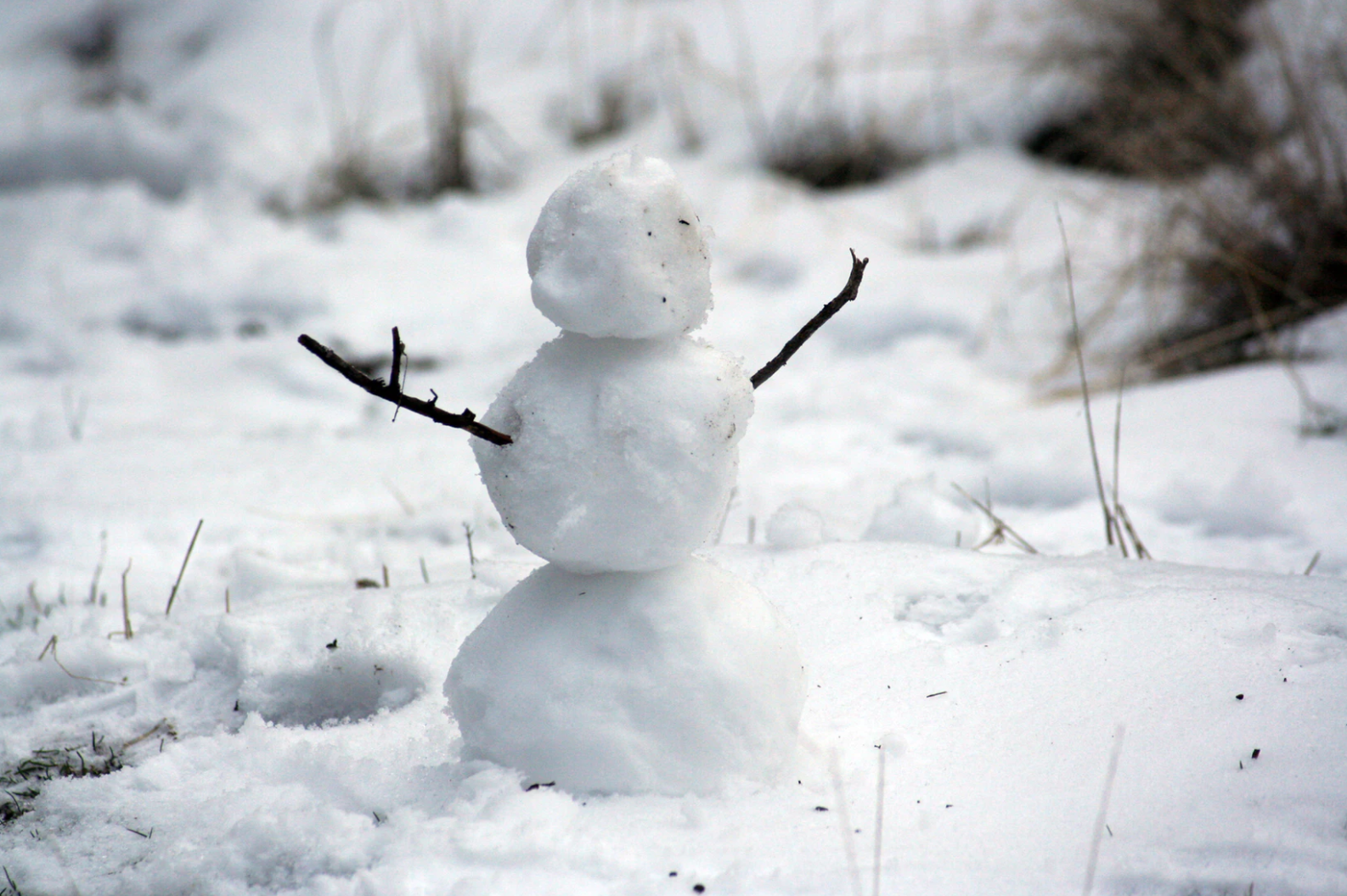 Will Digital School Days Replace Snow Days?