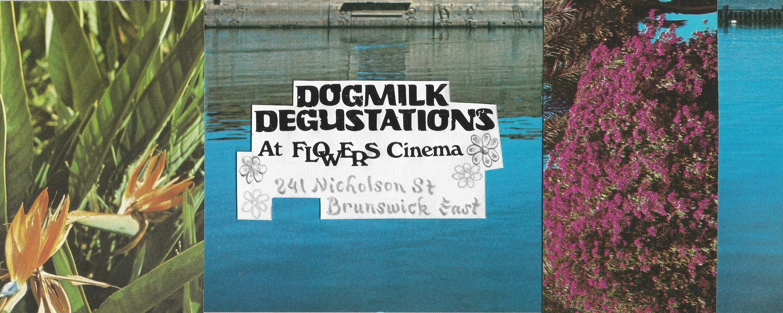 Dogmilk Degustations 3