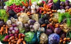В 2 раза увеличение сбора урожая с 1 квадратного метра
