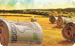 Помощь в получении грантов и субсидий