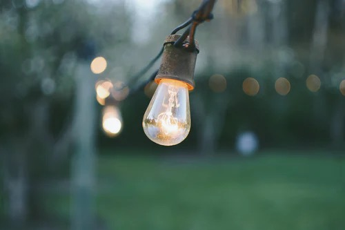 Lightbulb hanging from a wire in the woods