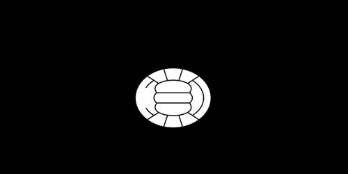 Bocholt VV