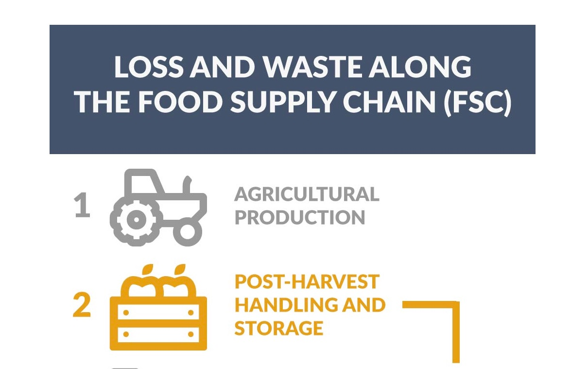 ST to Attend FIC 2019, Working on Decreasing European Food Loss and Waste