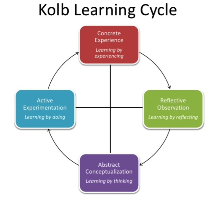 Kolb Learning Cycle for BLM staying informed