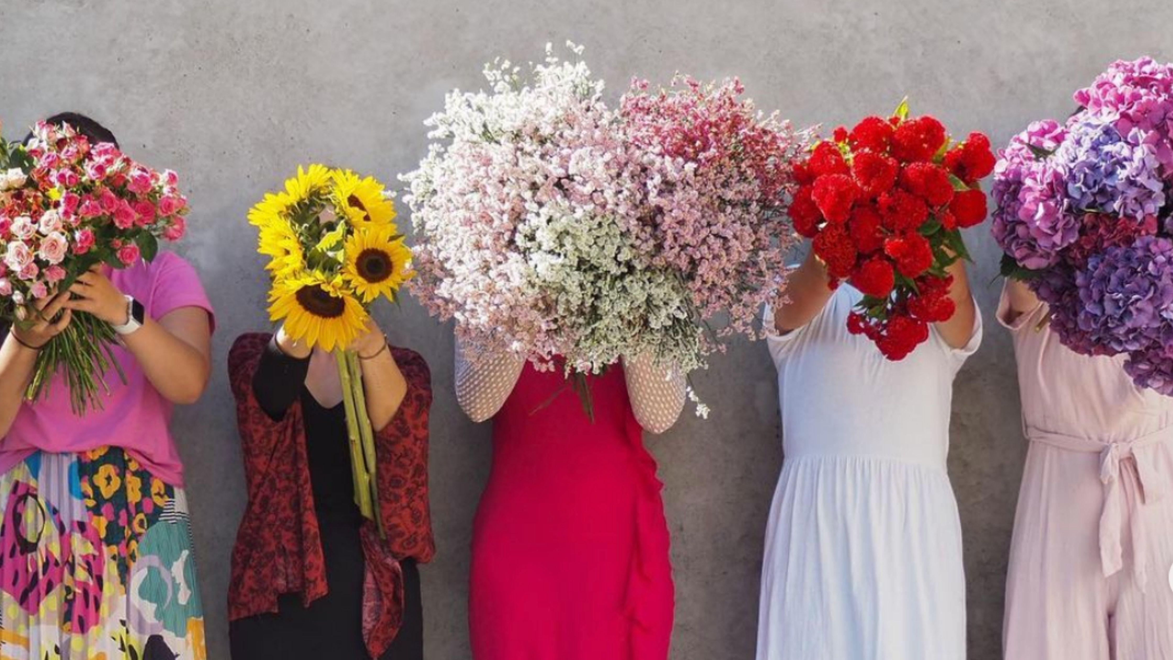 the green room flower co shopify florist and zapiet