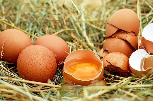 uova aperte riprese in primo piano