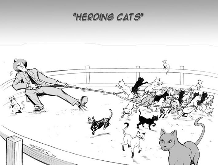 Herding Cats: What MSPs Really Do