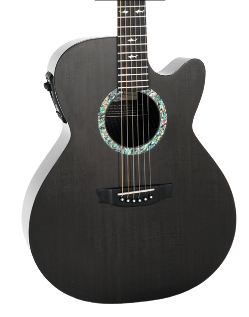 WS, RainSong's Signature Guitar, is a wonderfully versatile instrument