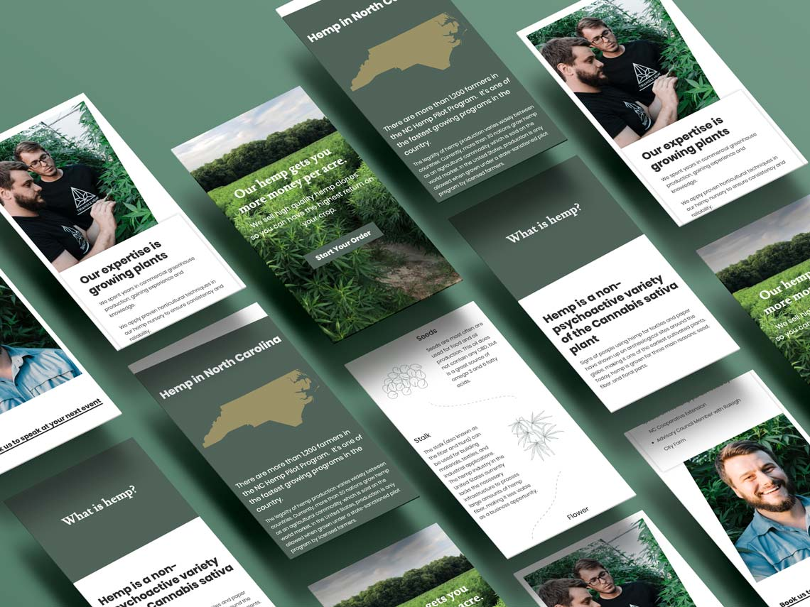 Responsive mobile web design isometric examples for Triangle Hemp