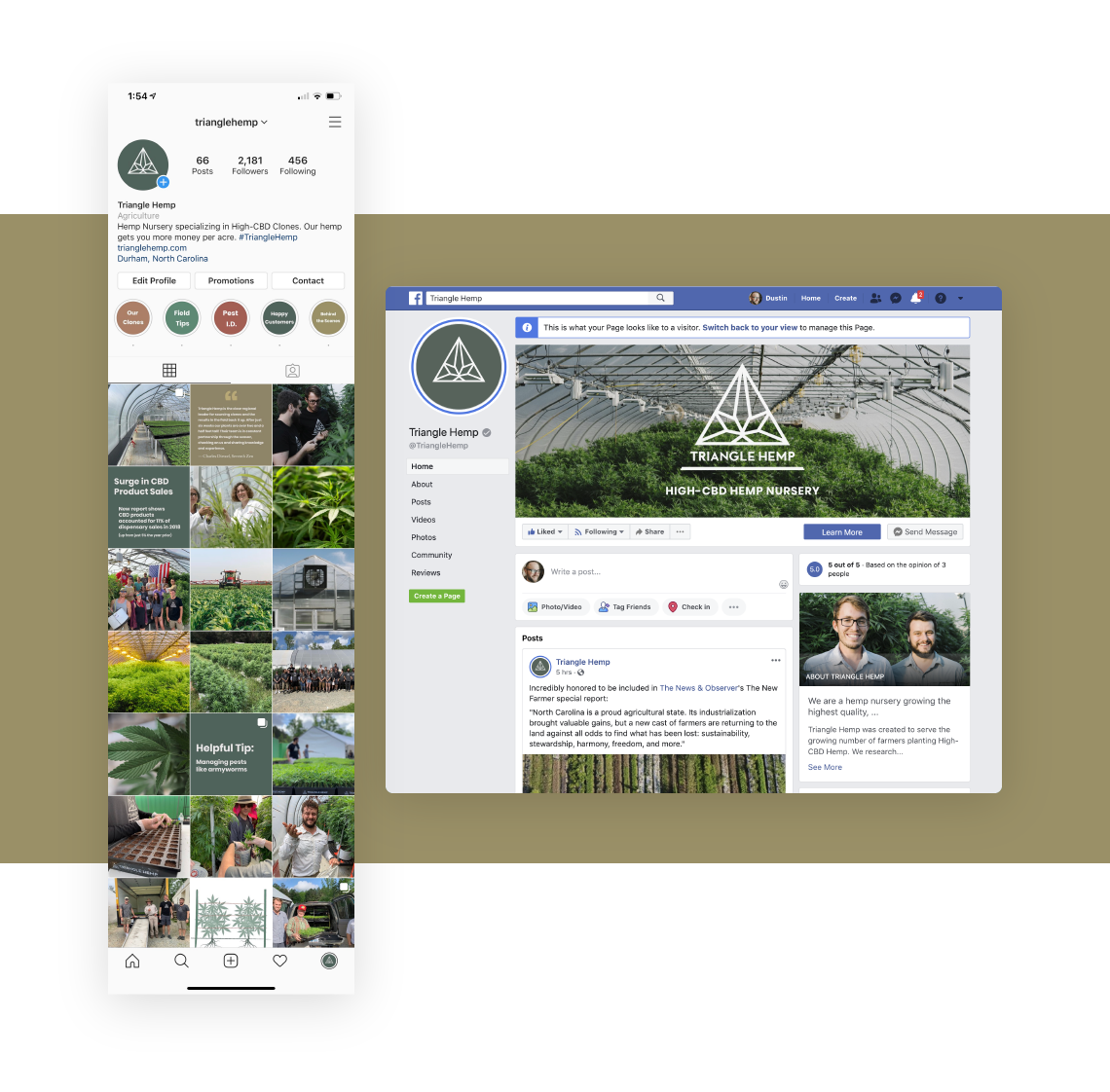 Social media marketing graphic, showing how creative studio Goodness helps their client Triangle Hemp grow their customer audience on Instagram and Facebook