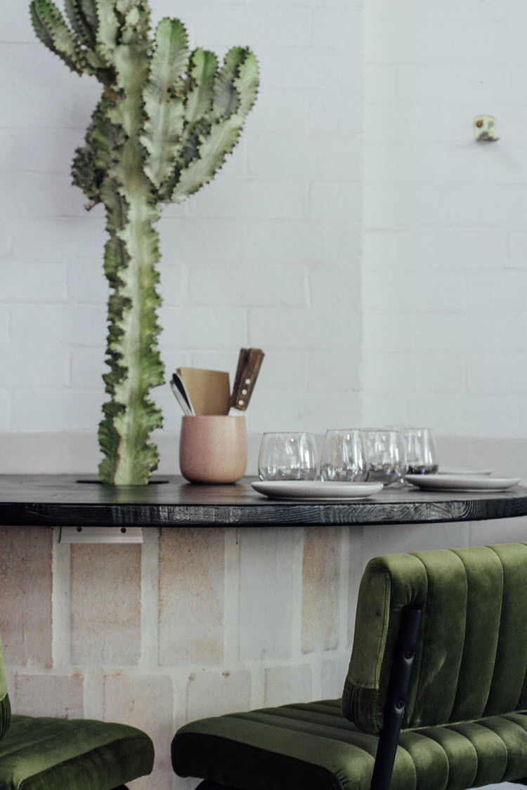 Indoor plant and table styling