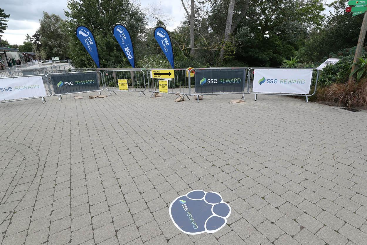 event organizing branding installation