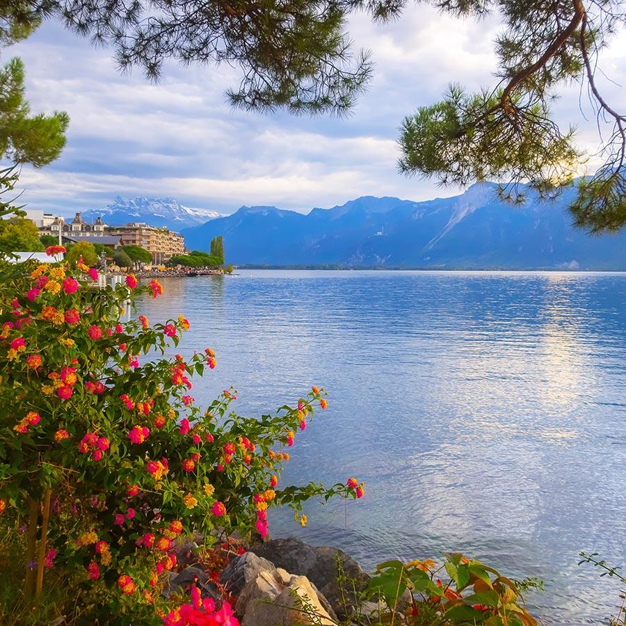 Organisation de mariages à Montreux