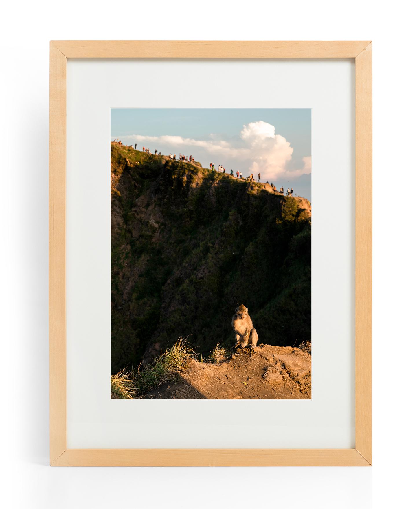 Mt Batur Monkey