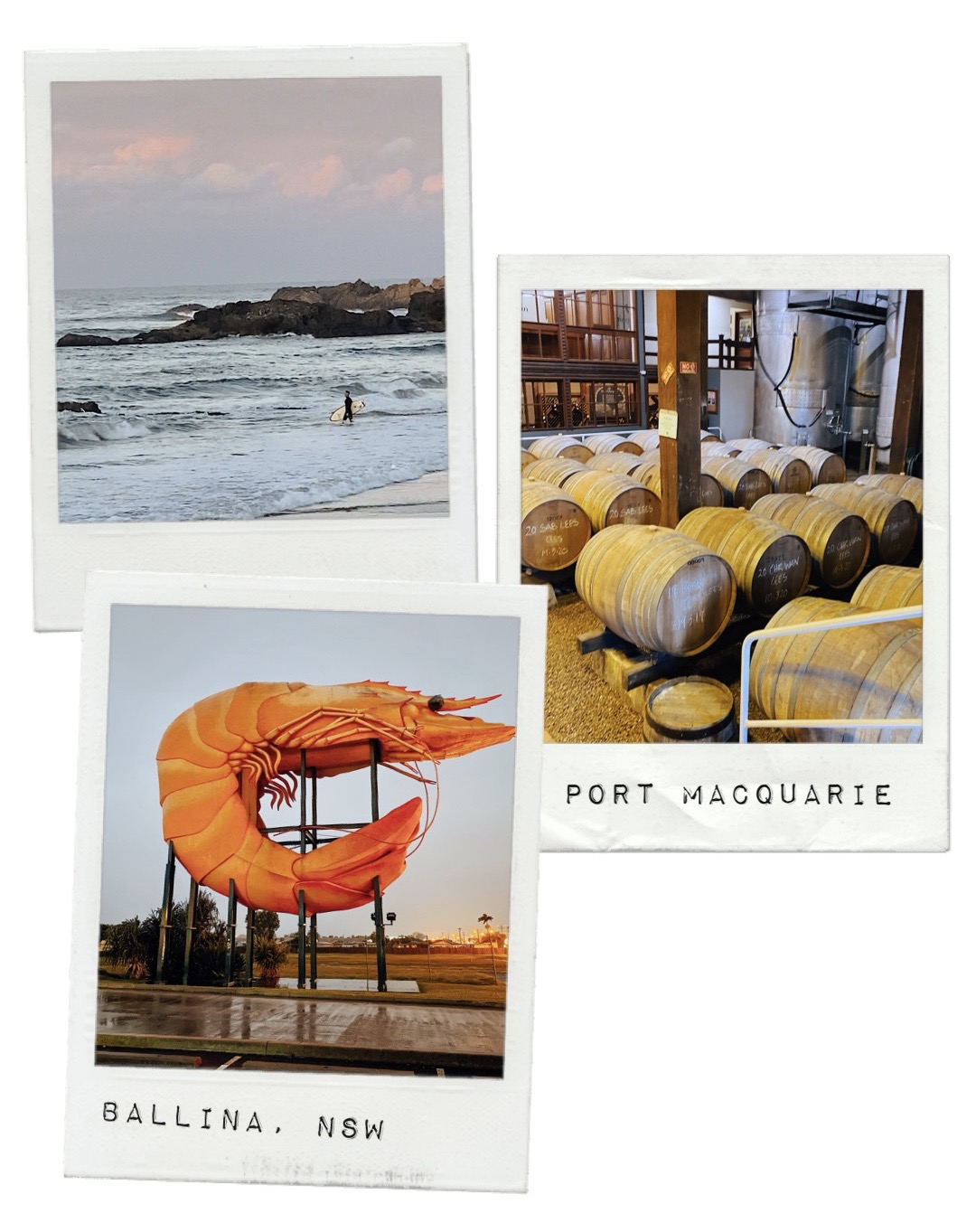 Port Macquarie beach, Cassegrain winery and Ballina's giant prawn