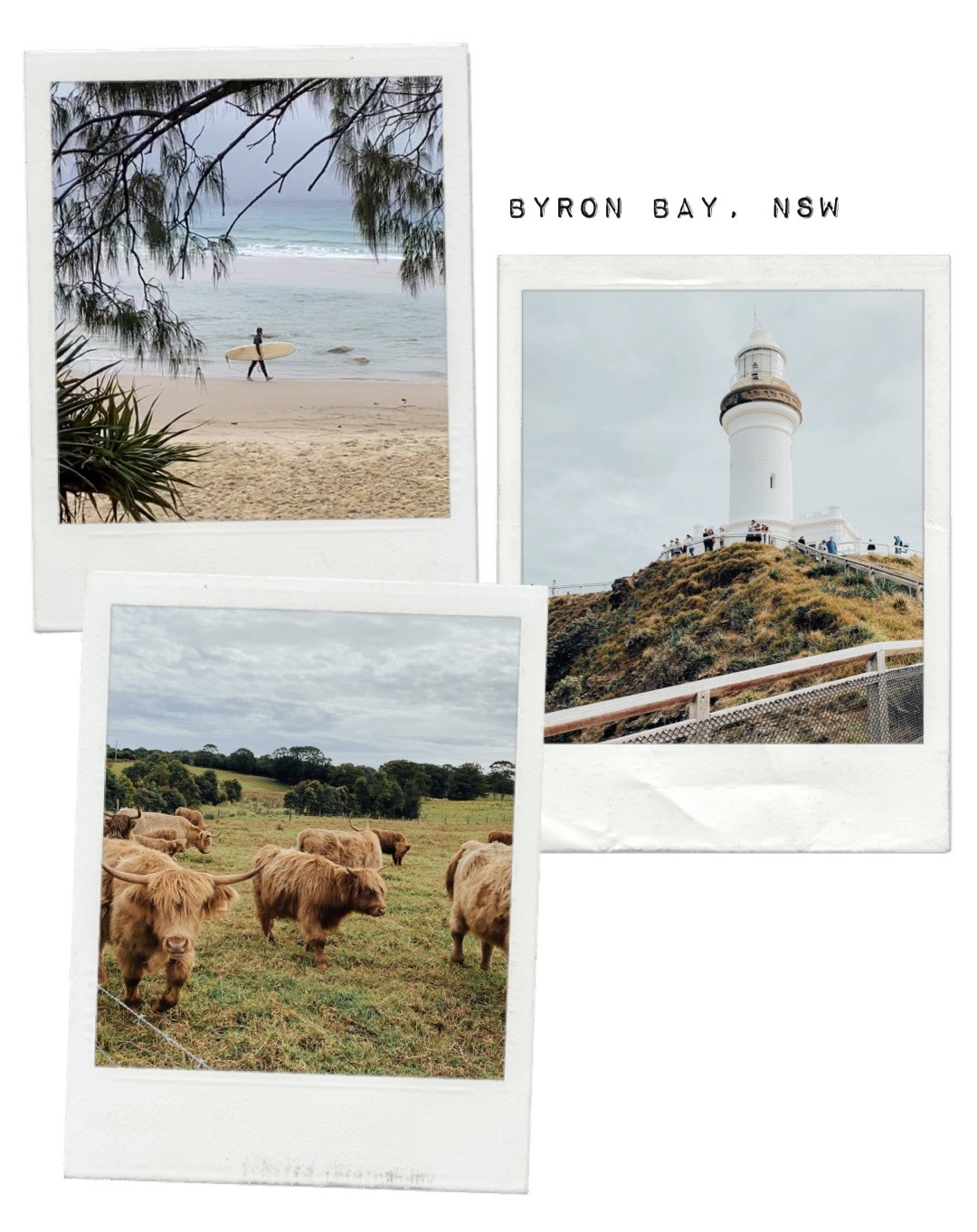 Byron Bay lighthouse, beach and highland cows!