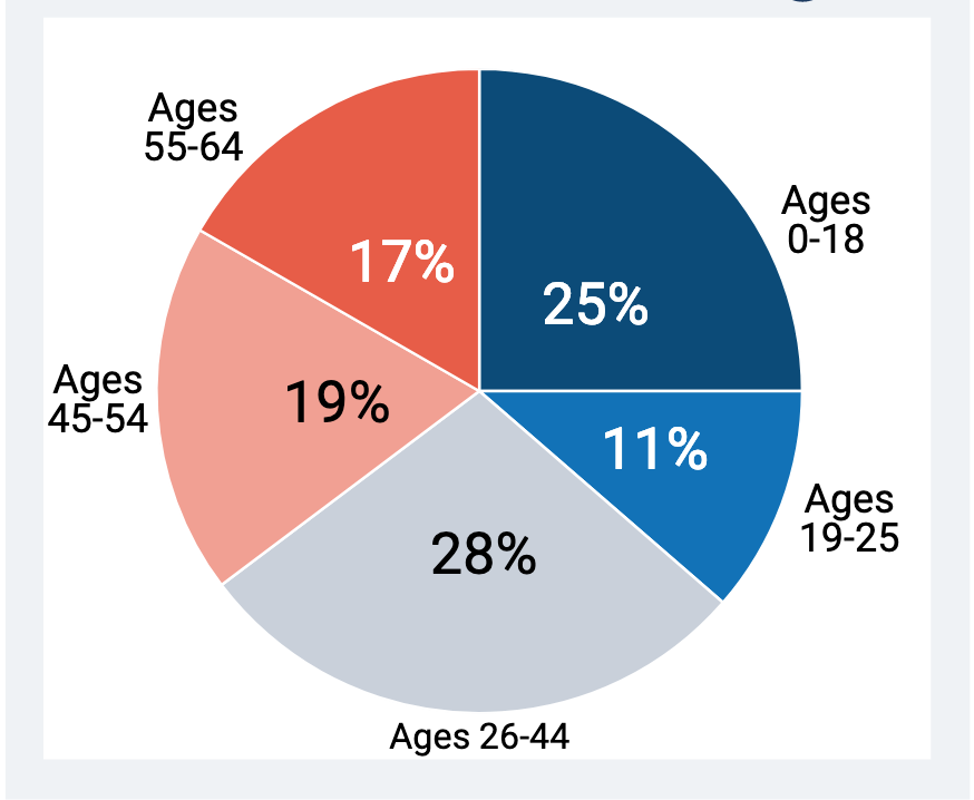 pie chart of ages and percentage in population