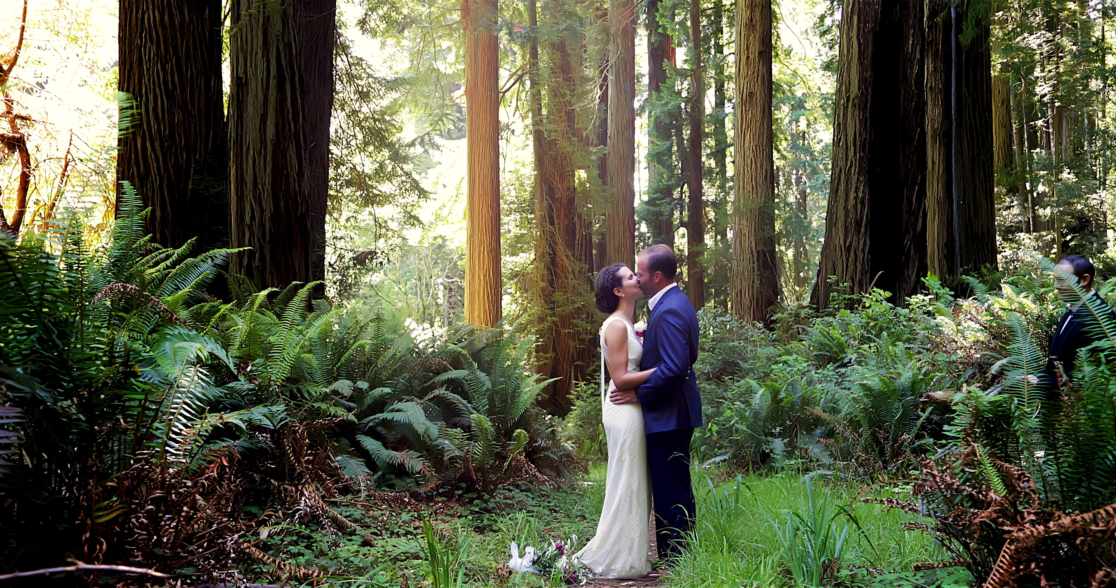 Bride and groom hugging in redwood forest near Crescent City, CA
