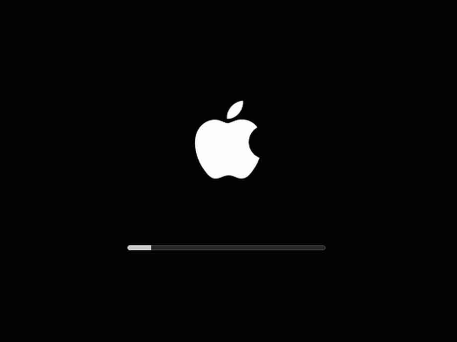 MacBook Not Booting or macOS issue