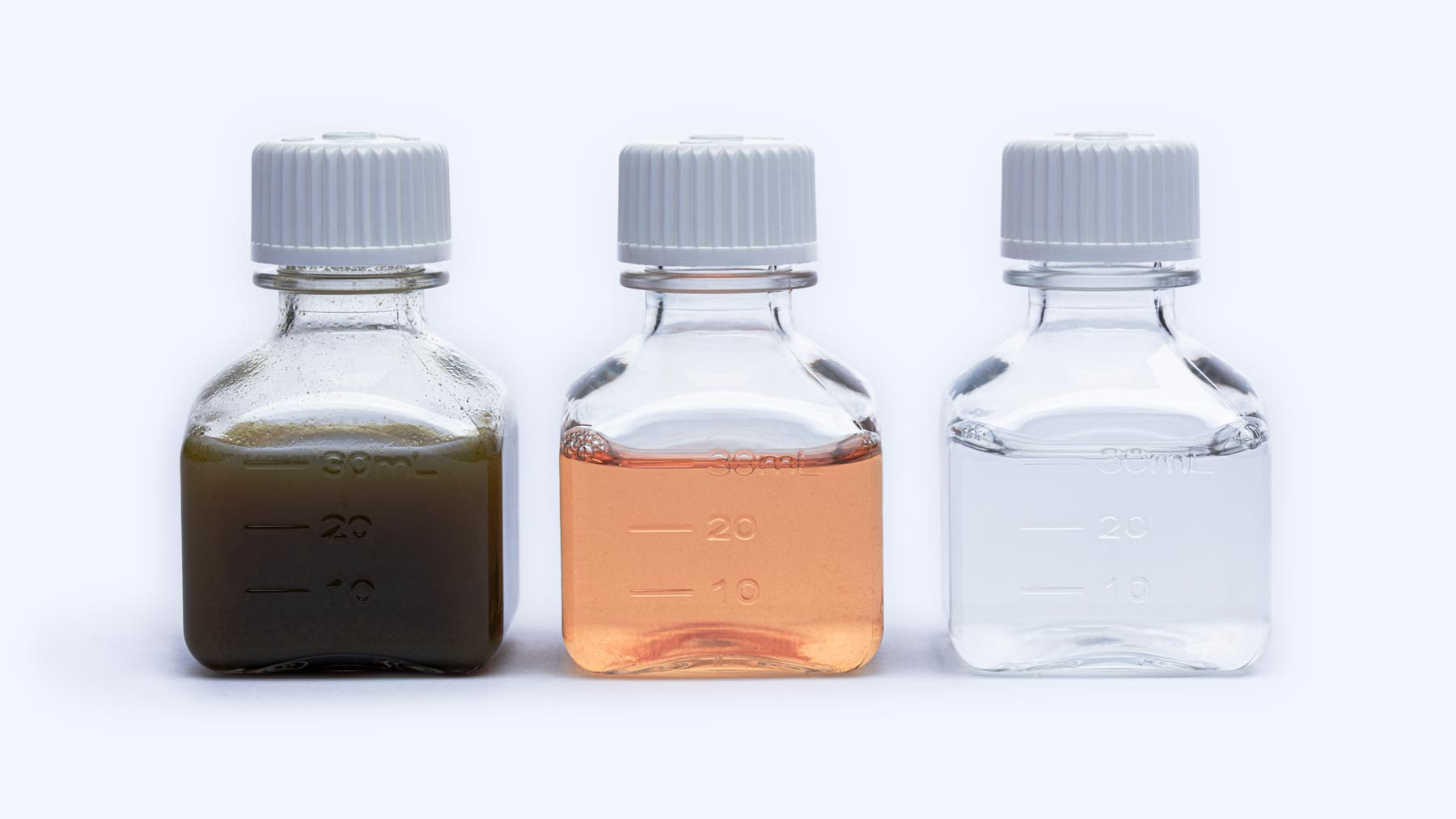 Intrinsic Factor 3 stages of extraction and purification  shown in 3 separate glass bottles.