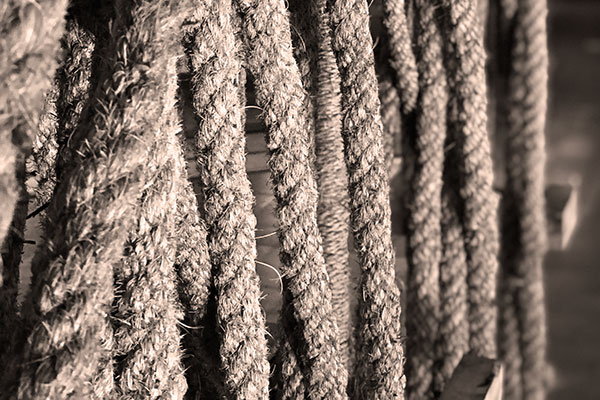 The rope display at the Sidapur Museum of Coffee & Culture