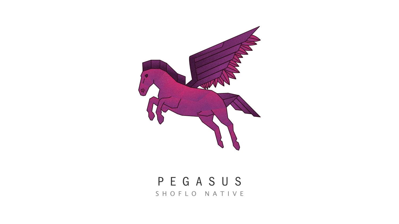 Promotional illustration for Pegasus