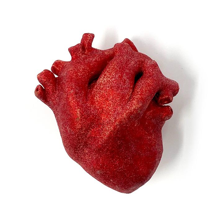 Kashi's Heart