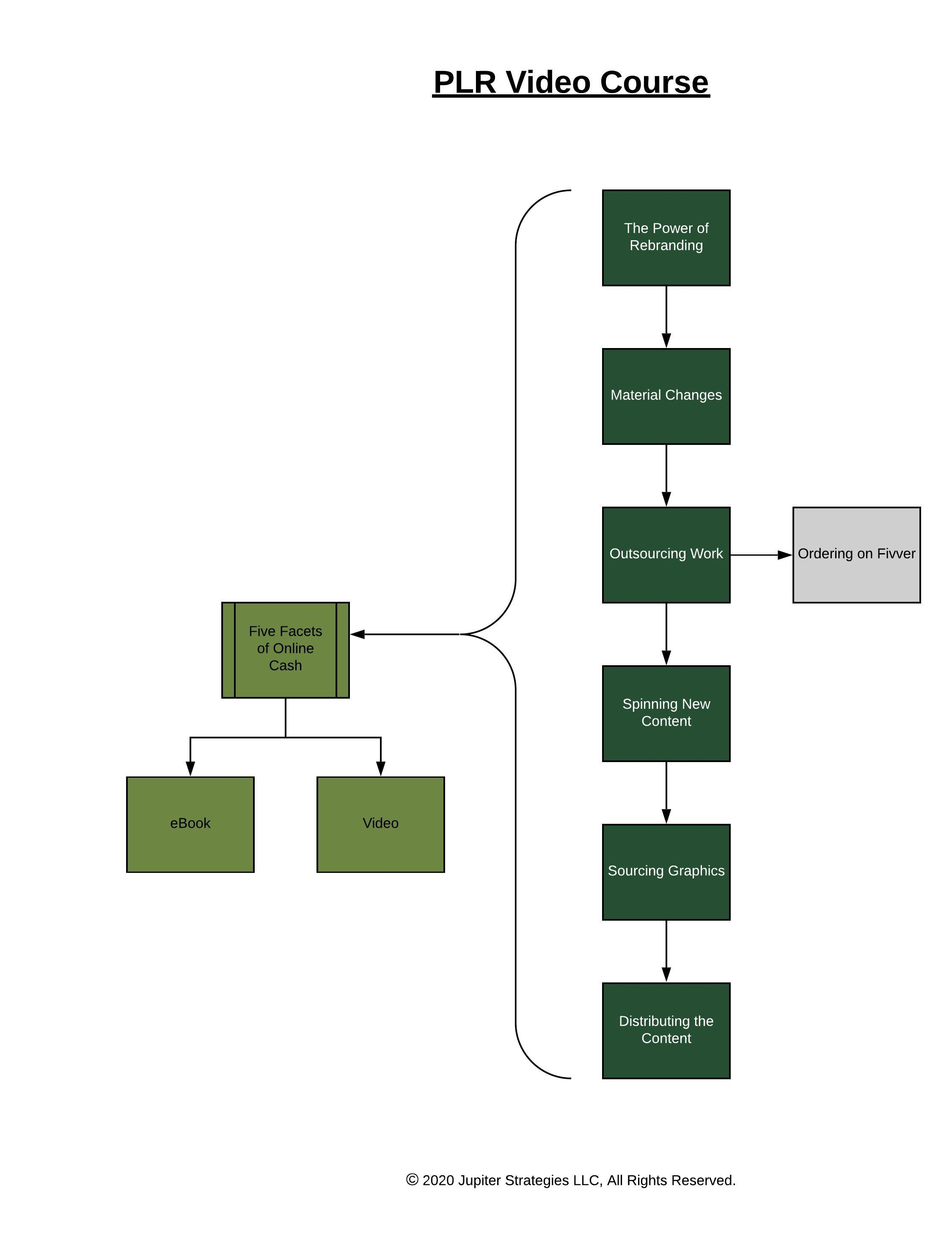 Image of PLR Video Course layout