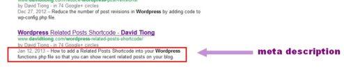 add meta description to wordpress header