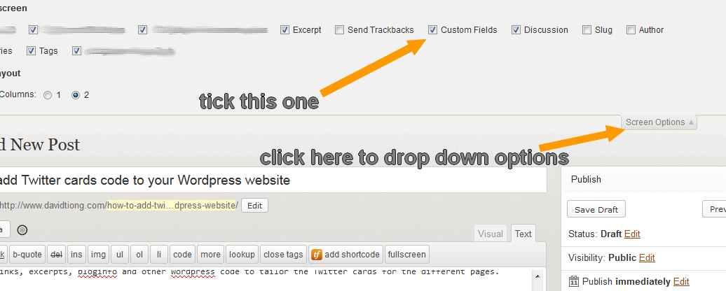 custom fields in screen options