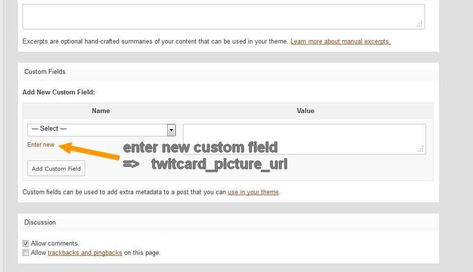 add new custom field