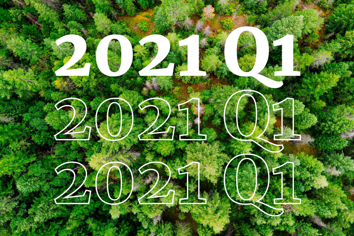 Our first quarterly report: what happened in 2021 Q1