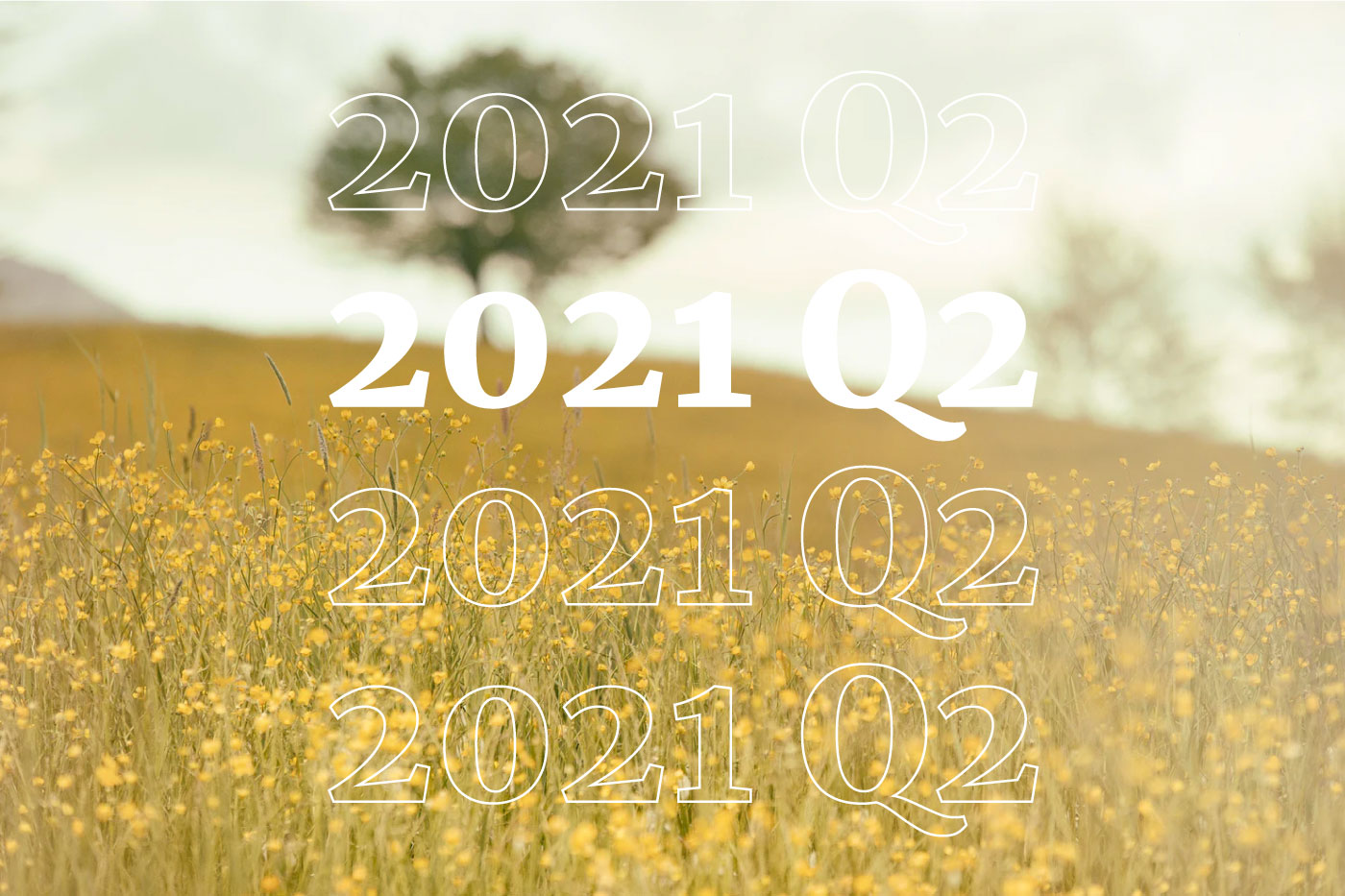 Report Q2: the numbers of our second quarter